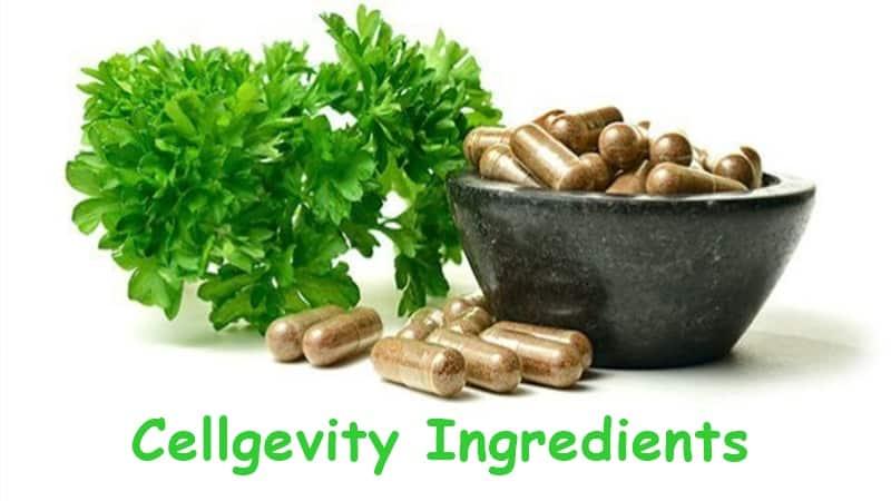 Cellgevity Ingredients