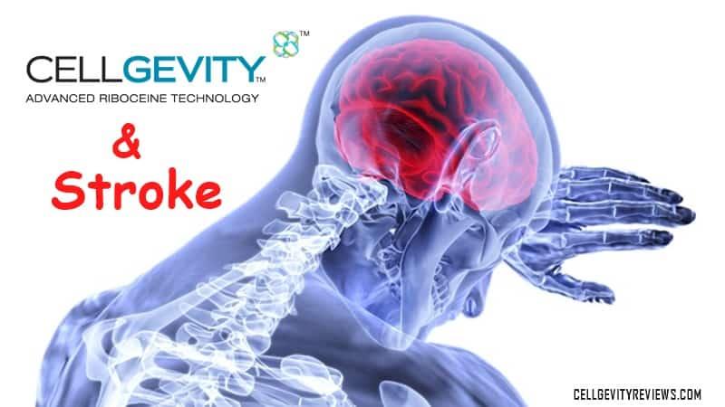 Cellgevity and Stroke