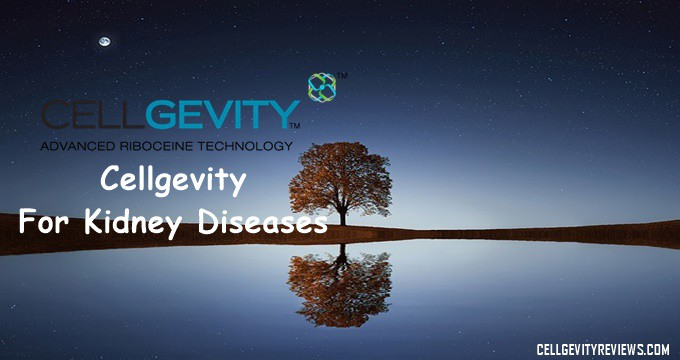 Cellgevity and Kidney problems