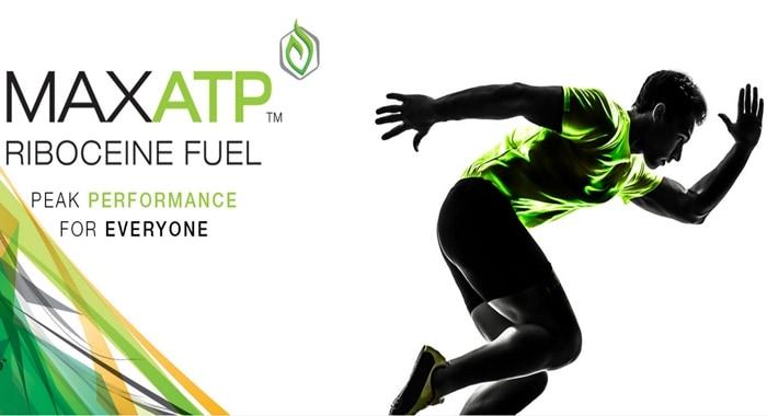Max ATP review